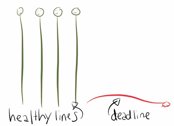 IT Project: It Takes Two To Meet A Deadline